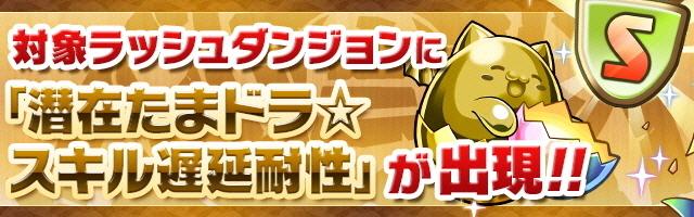 [img]https://pad.gungho.jp/member/event/img/190412/rash_chien-tama.jpg[/img]