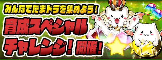 https://pad.gungho.jp/member/event/img/210507/special_challenge.jpg